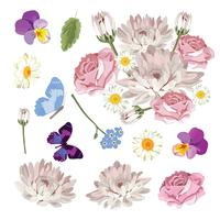 Set collection of different flowers isolated on white background. Vector illustration