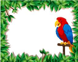 Parrot with nature frame