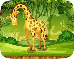 Een giraffe in de jungle