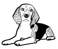 vettore ENV del cane di beagle
