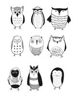 Owl logo set.Beautiful vector set of nine
