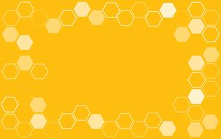 bee hive background vector