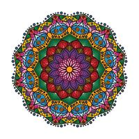 Linda mandala colorida 1