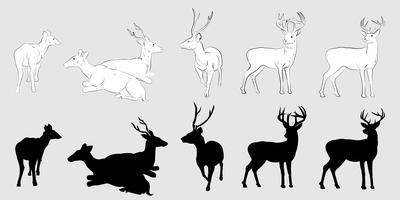 Silueta de ciervo vector