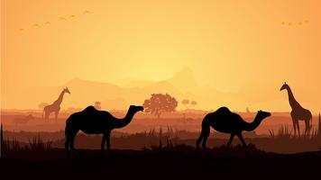 Giraffe and Camel silhouette