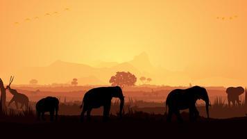 Sagoma di elefante