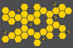 hexagon bee hive design art and space background  vector