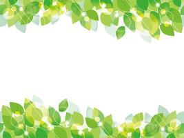 Naadloze groene bladeren achtergrond.