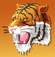 vector isolated tiger head in color background.