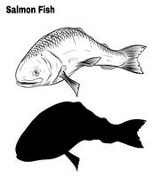 Salmon art highly detailed in line art style