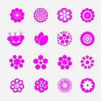 set of pink blooming flower vector
