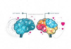 Human Brain Hemispheres Vol 2 Vector