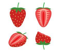 Ilustración vectorial de fresa fresca conjunto aislado sobre fondo blanco