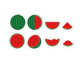 vectorillustratie van verse watermeloen set geïsoleerd op een witte achtergrond