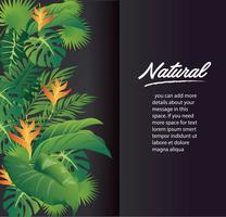green leaves modern design and black background vector illustration