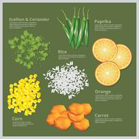 Illustration vectorielle Ingredient Food