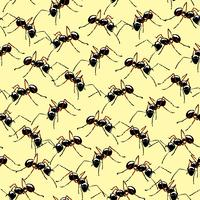 Macro realistic ants seamless background.