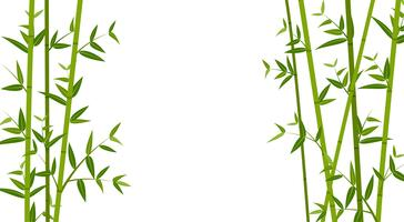 Vector illustration of green bamboo template background