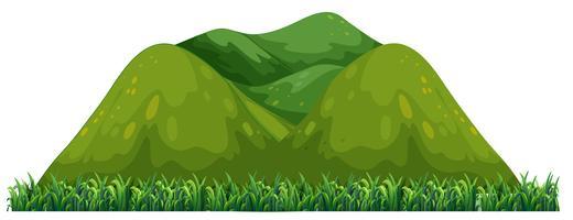 Isolerat grönt berg på vit bakgrund