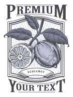 Bergamot vector vintage label