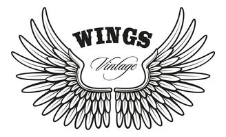 Vintage wings_1 vector