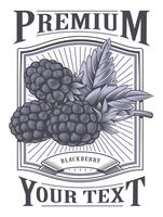 Blackberry vector vintage label