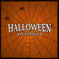 Halloween background  with web of spider.