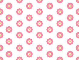 Seamless mönster sakura blomma på vit bakgrund - Vektor illustration
