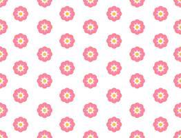 Flor de sakura padrão sem emenda sobre fundo branco - ilustração vetorial