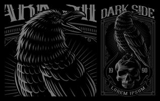 Black Raven on the skull. vector
