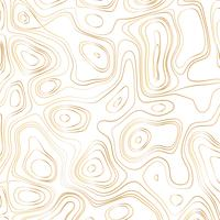 Abstract gold line waves design on white background - Vector Illustration