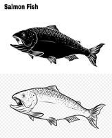 Fish vector by hand drawing.