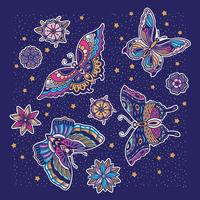 Butterfly pattern with blue background vector