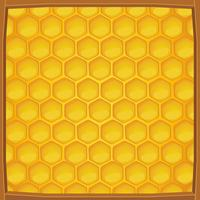 Cartoon honeycomb packed in wooden frame pattern background vector