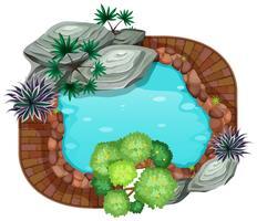 Vista aérea de un estanque.