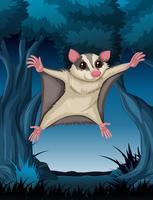 Possum di volo nei boschi