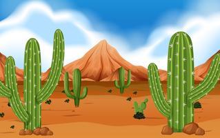 Deserto com montanha e cactos
