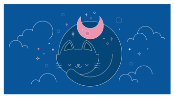 Cats Night Vector