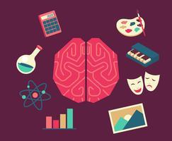 hemisferen van menselijke hersenen