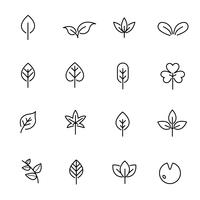 Leaf icon set vector. Nature and symbol concept. Thin line icon theme. White isolated background. Illustration vector.