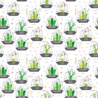 Cactuses In Glass Terrariums with Geometric Pattern Background. Vector Illustrations For Gift Wrap Design.