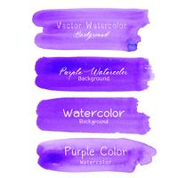 Purple brush stroke watercolor on white background. Vector illustration.