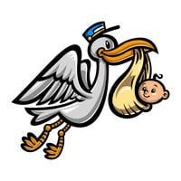 Cartoon Flying Stork Bird Delivering A Baby