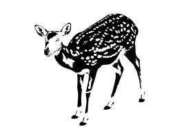 silhueta de veado manchado em preto e branco