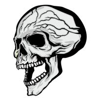 aggressive emblem with skull vector