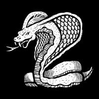 Deadly cobra snake illustration