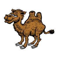 Kamel-Cartoon