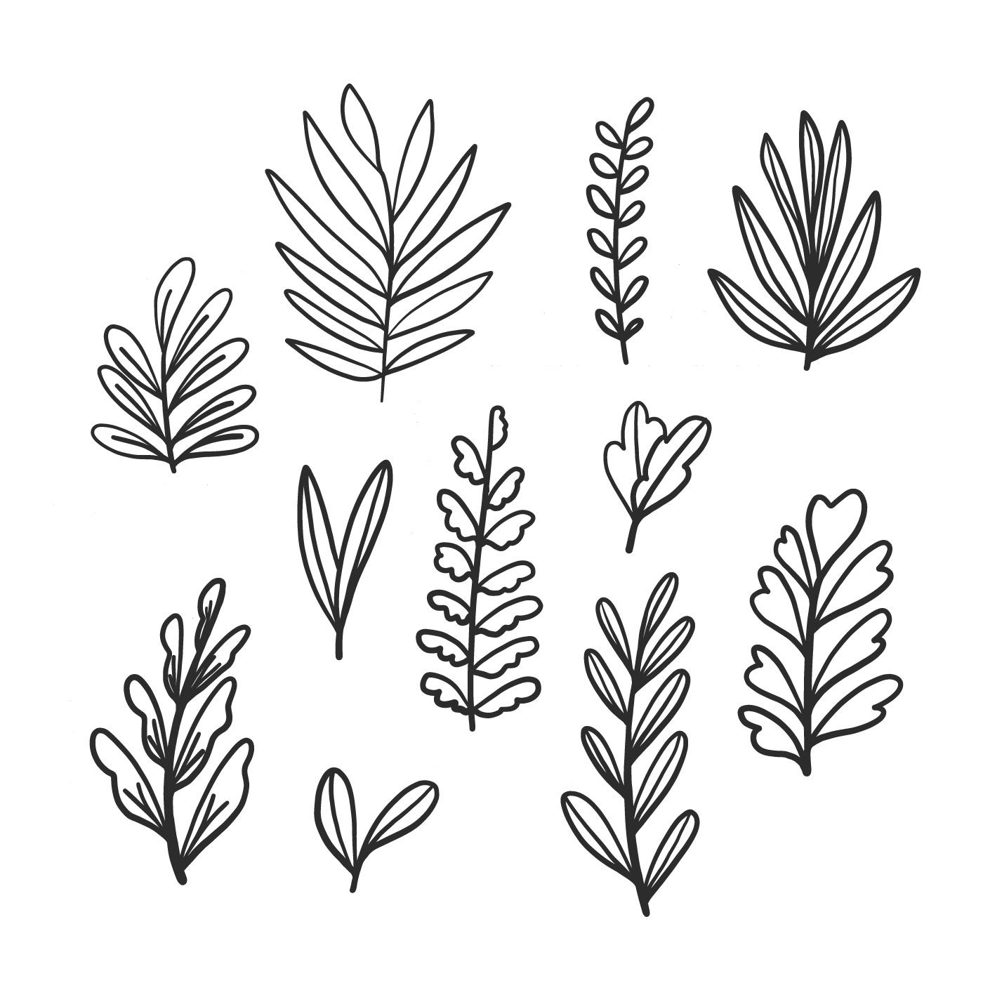 Doodle Leaves Collection Set Download Free Vectors Clipart Graphics Vector Art