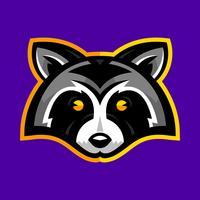 Raccoon Animal Face Vector