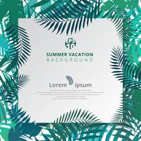 summer tropical with exotic palm leaves or plants on white paper background.